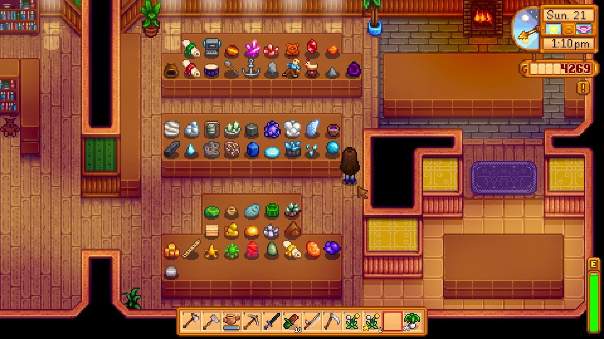 Donate Museum Stardew Valley